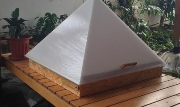 pyramidální pařeniště